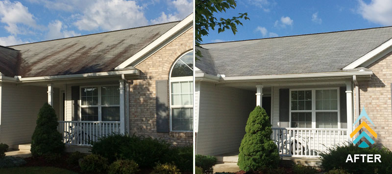 roof cleaning in wyoming, michigan removes black streaks from shingles