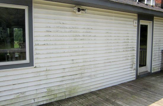 roof cleaner grand rapids vinyl siding cleaning before